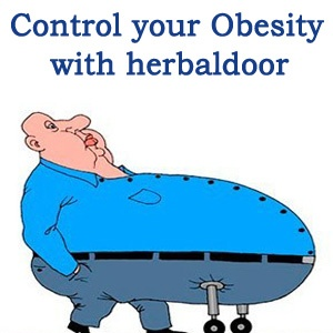 cure your obesity with herbaldoor